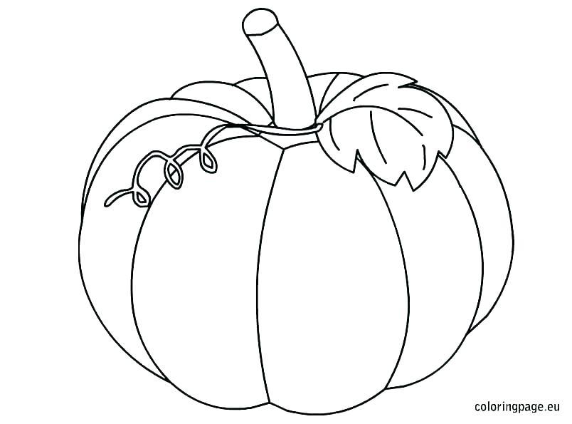 804x595 Pumpkin Color Pages Printable Skeleton Pumpkin Coloring Pages