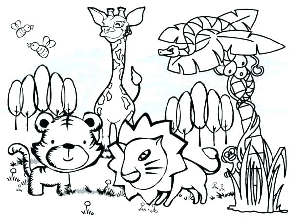 600x452 Rainforest Flowers Coloring Pages Coloring Pages Printable Ideas