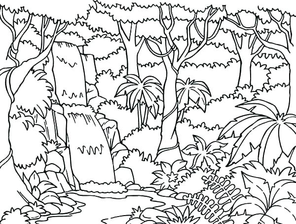 600x453 Forest Coloring Page Forest Coloring Pages Forest Coloring Page