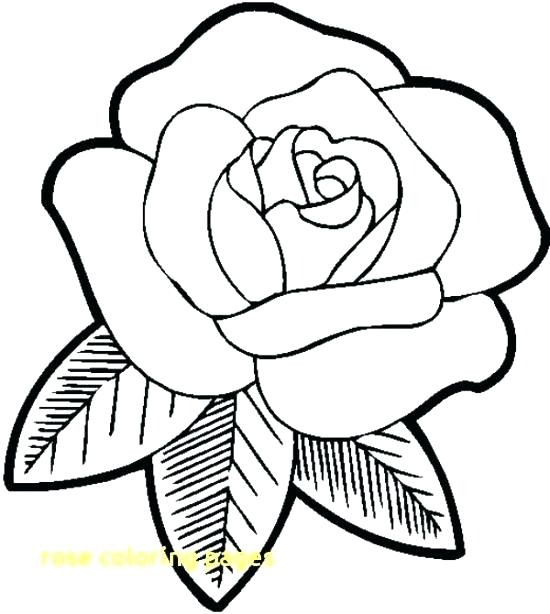 Printable Rose Coloring Pages