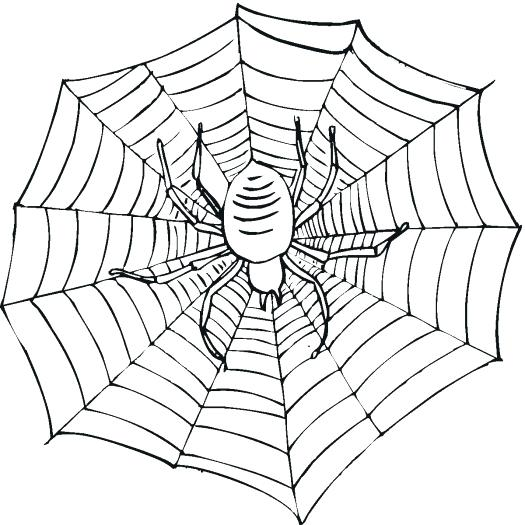525x525 Spider Web Coloring Page Spider Color Pages Pin Spider Coloring