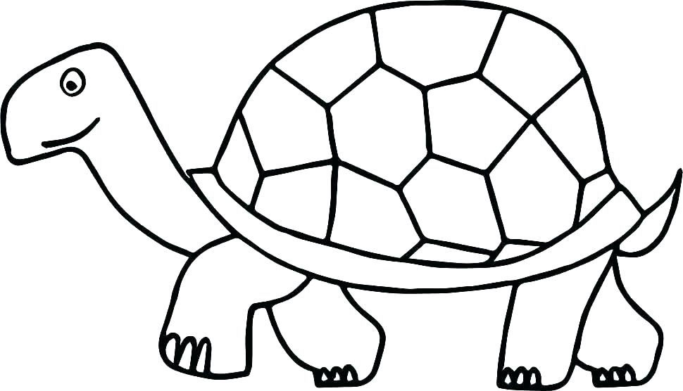 970x556 Ninja Turtles Coloring Sheet Printable Turtle Coloring Pages Free