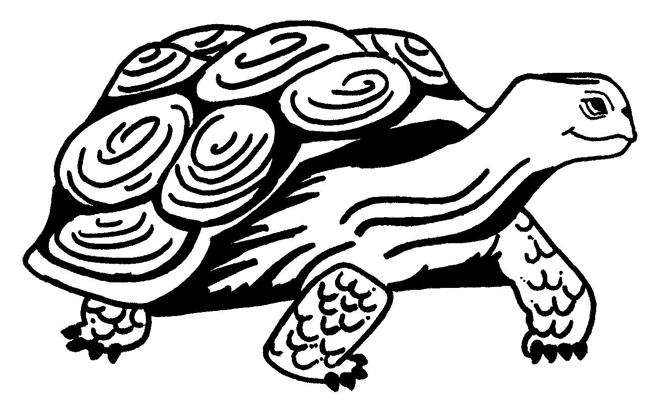 1306x814 Printable Turtle Coloring Pages For Kids Bright Book Acpra