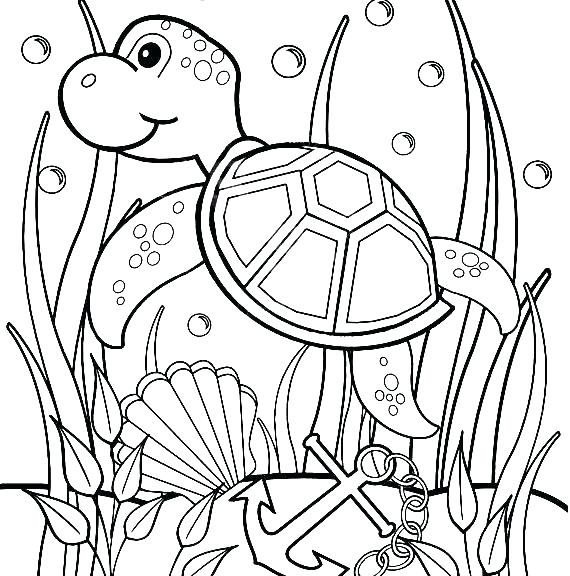 570x576 Sea Turtle Coloring Pages To Print