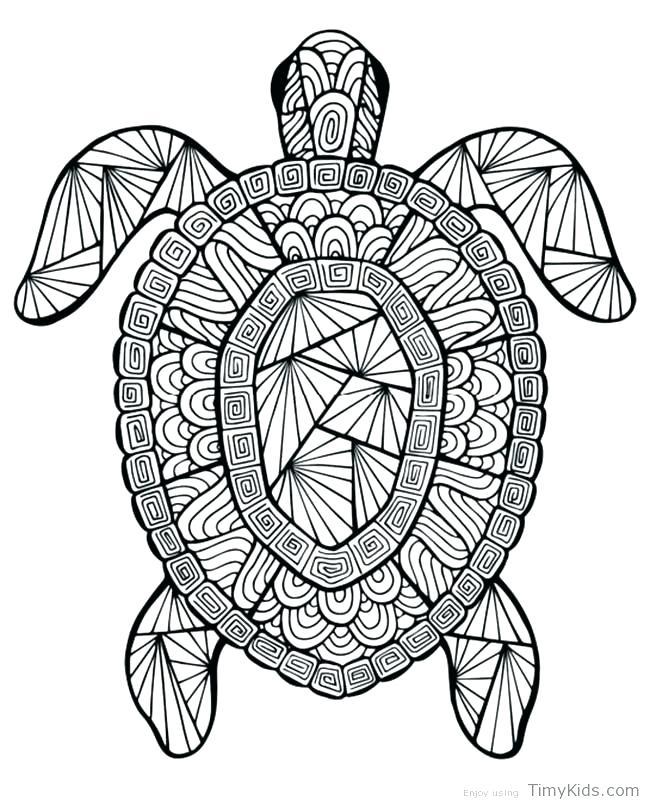 650x805 Coloring Pages Detailed Sea Turtle Advanced Coloring Baby Turtle