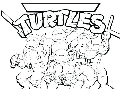 500x374 Coloring Pages Of Turtles Coloring Pages Turtle Printable Turtle