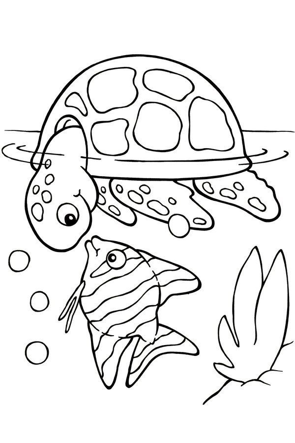 600x900 Free Printable Turtle Coloring Pages For Kids