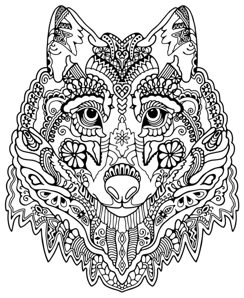 788x960 Wolf Abstract Doodle Zentangle Coloring Pages Colouring Adult