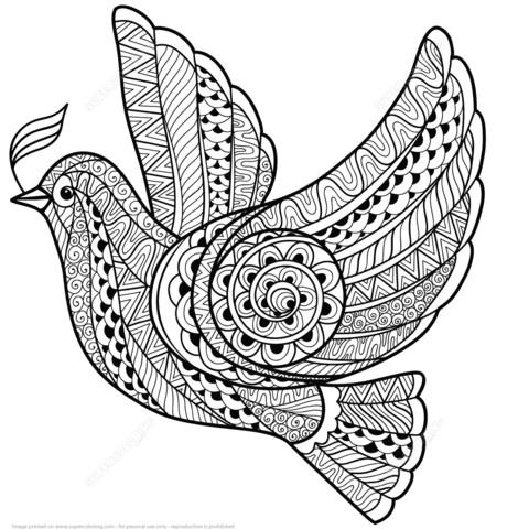 480x480 Christmas Zentangle Coloring Pages Owl Page Free Printable