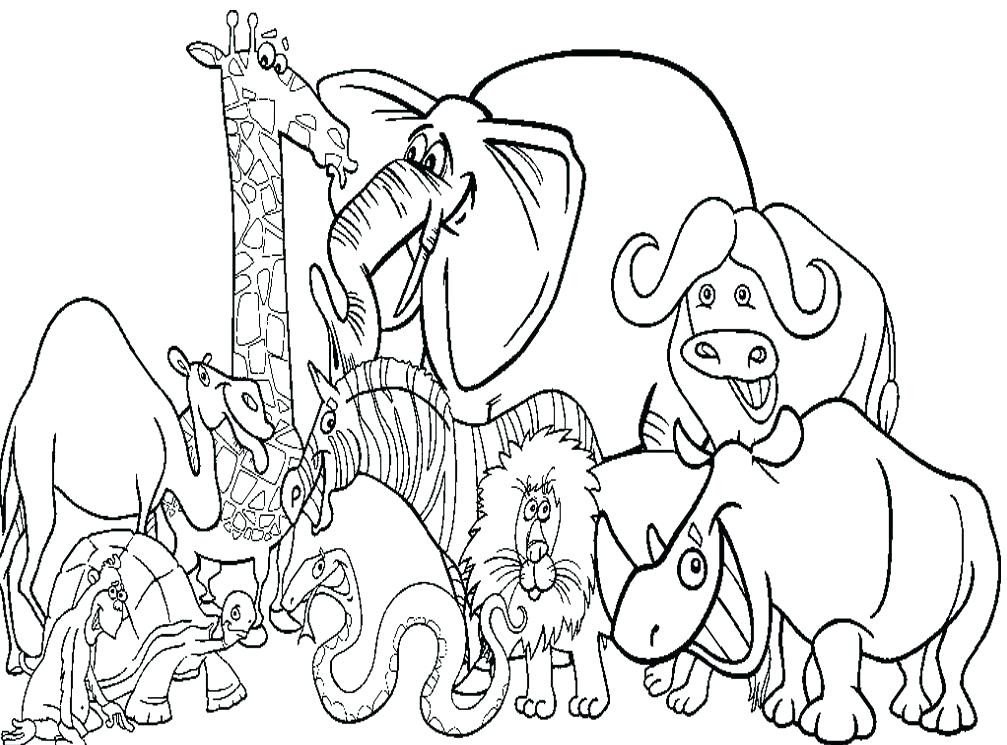 1007x745 Zoo Coloring Sheets Coloring Pages Zoo Animals Coloring Page Zoo