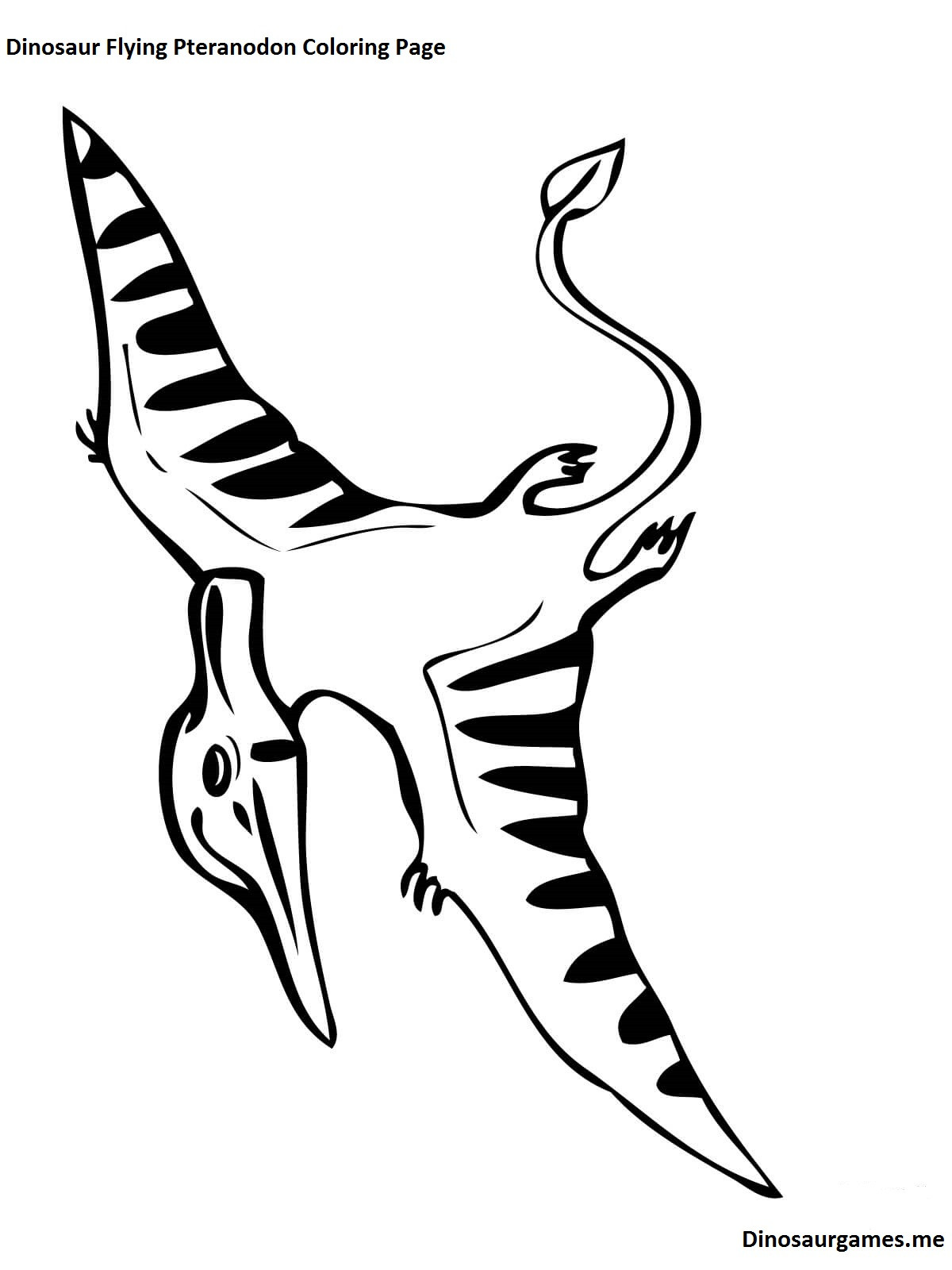 1200x1600 Pteranodon Coloring Pages