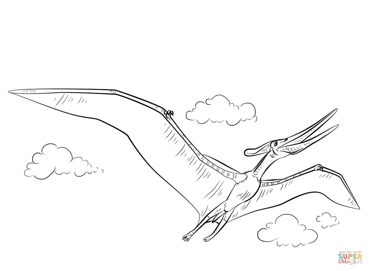 1186x872 Pteranodon Coloring Pages To Print Coloring For Kids