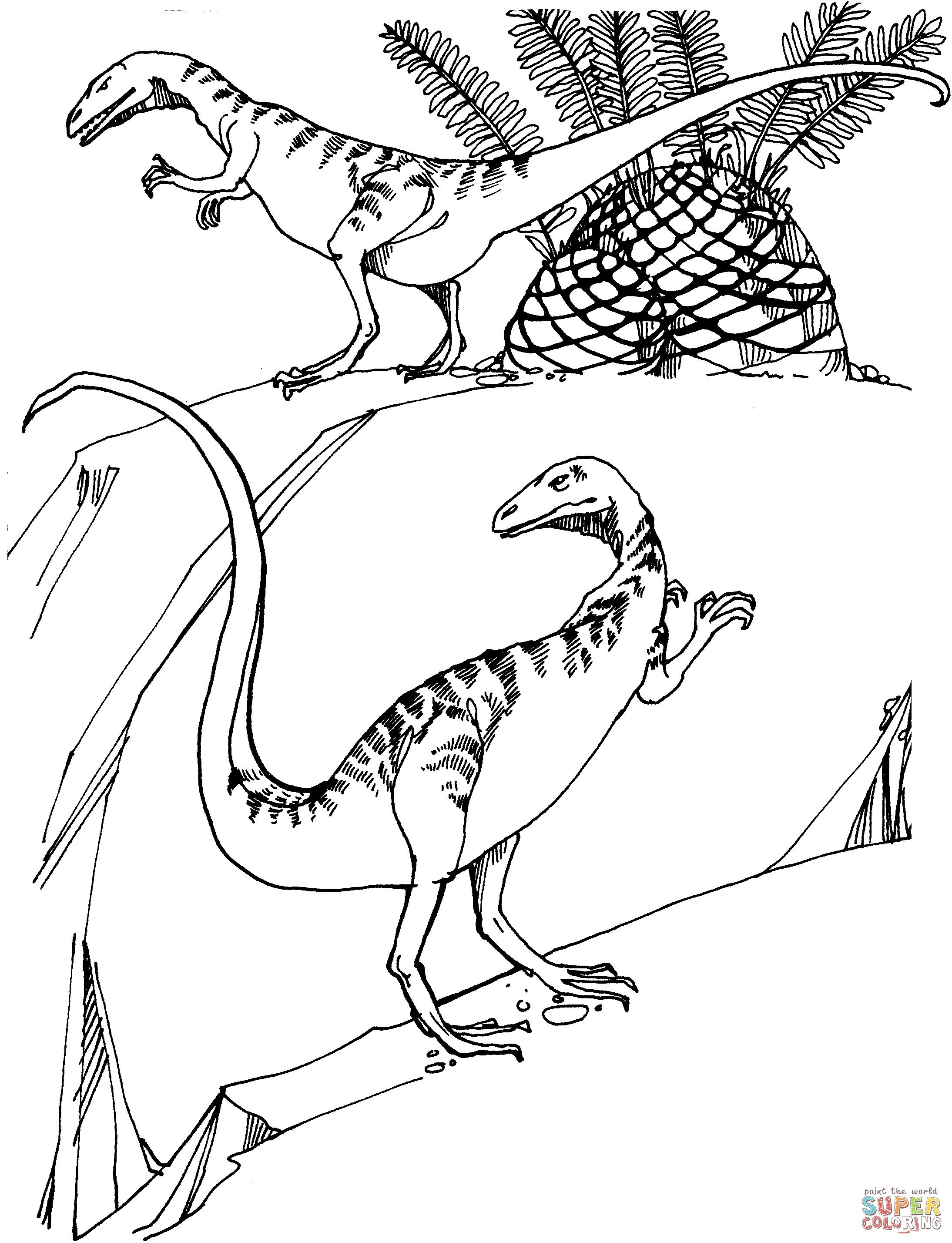 2188x2856 Two Pteranodons Dinosaurs Coloring Pages For Kids Best New