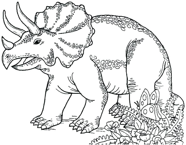 769x600 Coloring Pages Dinosaur Pterodactyl Coloring Page Dinosaur