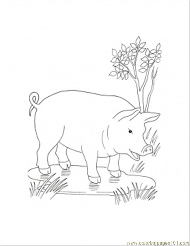 650x841 In The Puddle Coloring Page Coloring Page