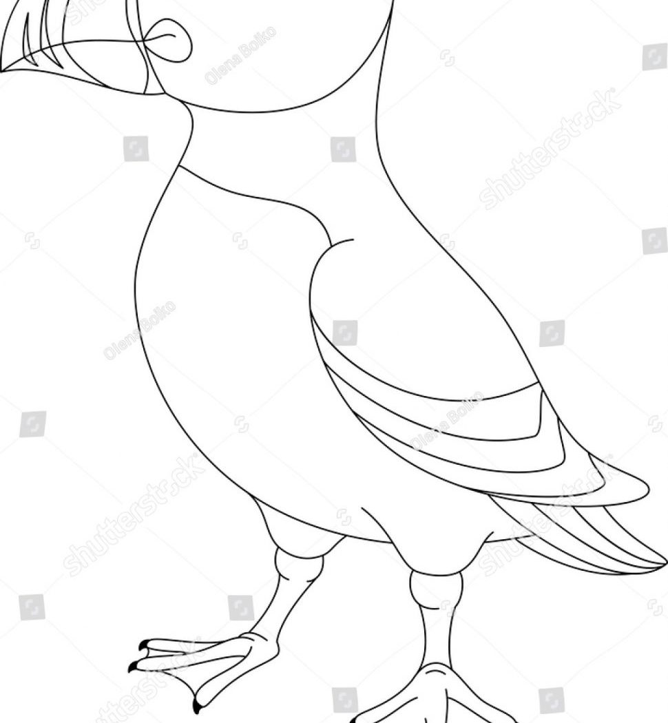 970x1050 Puffin Cartoon Coloring Page For Kids Easy Puffins Pages Free