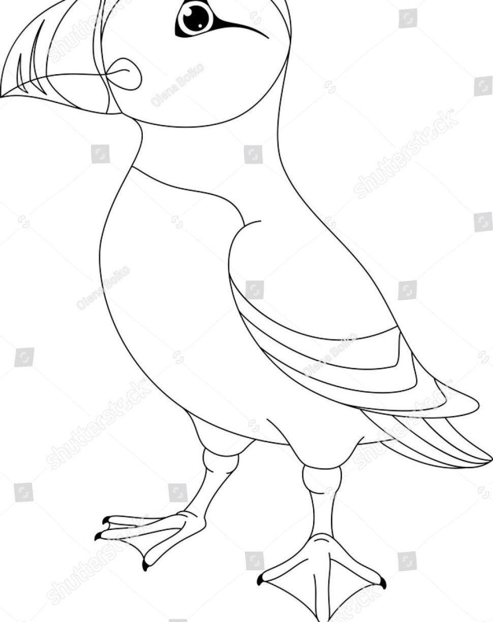 970x1224 Puffin Coloring Page
