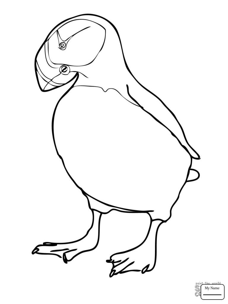 768x1024 Puffin Coloring Page Deeptown Club