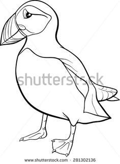 236x323 Atlantic Puffin Seabird Coloring Page