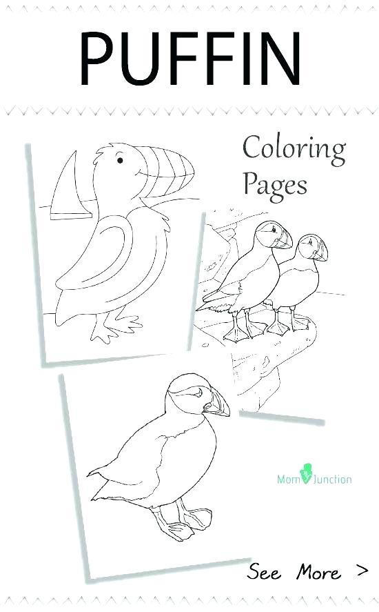 550x887 Puffin Coloring Page Seagull Coloring Page Puffin Coloring Page