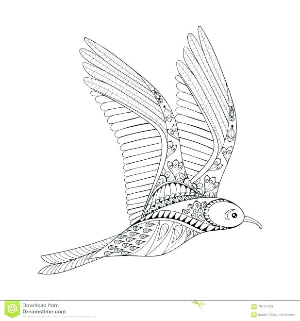 618x661 Seagull Coloring Page Puffin Coloring Page Puffin Rock Seagull