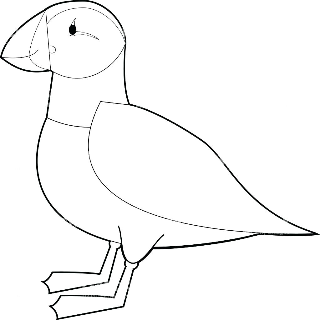 1023x1024 Awesome Puffin Coloring Page Collection Printable Coloring Sheet