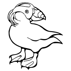 230x230 Top Puffin Coloring Pages For Toddlers