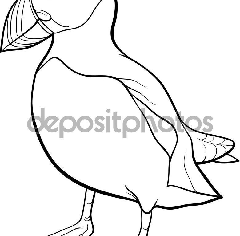 780x768 Tufted Puffin Coloring Page Free Printable Puffins Pages Animals