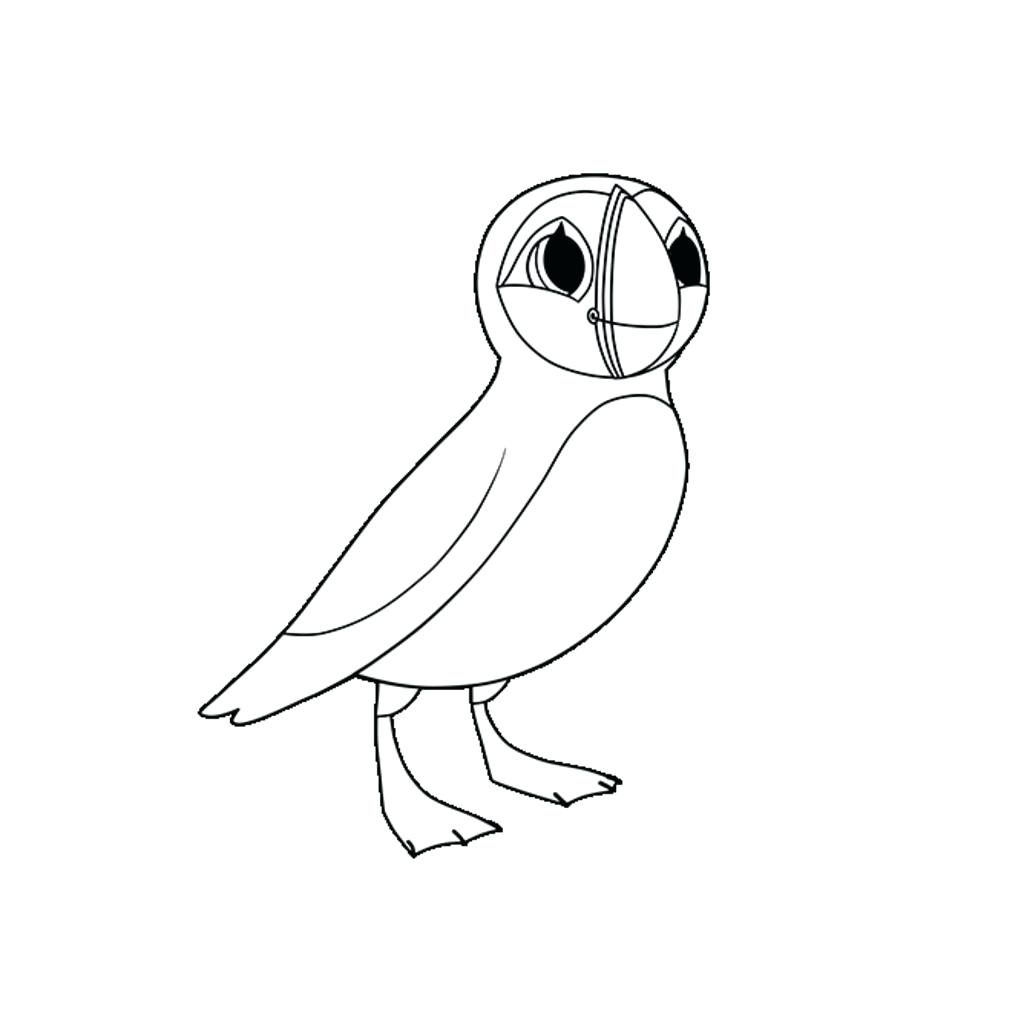 1024x1024 Wonderful Puffin Coloring Page Bird Jenoni Me