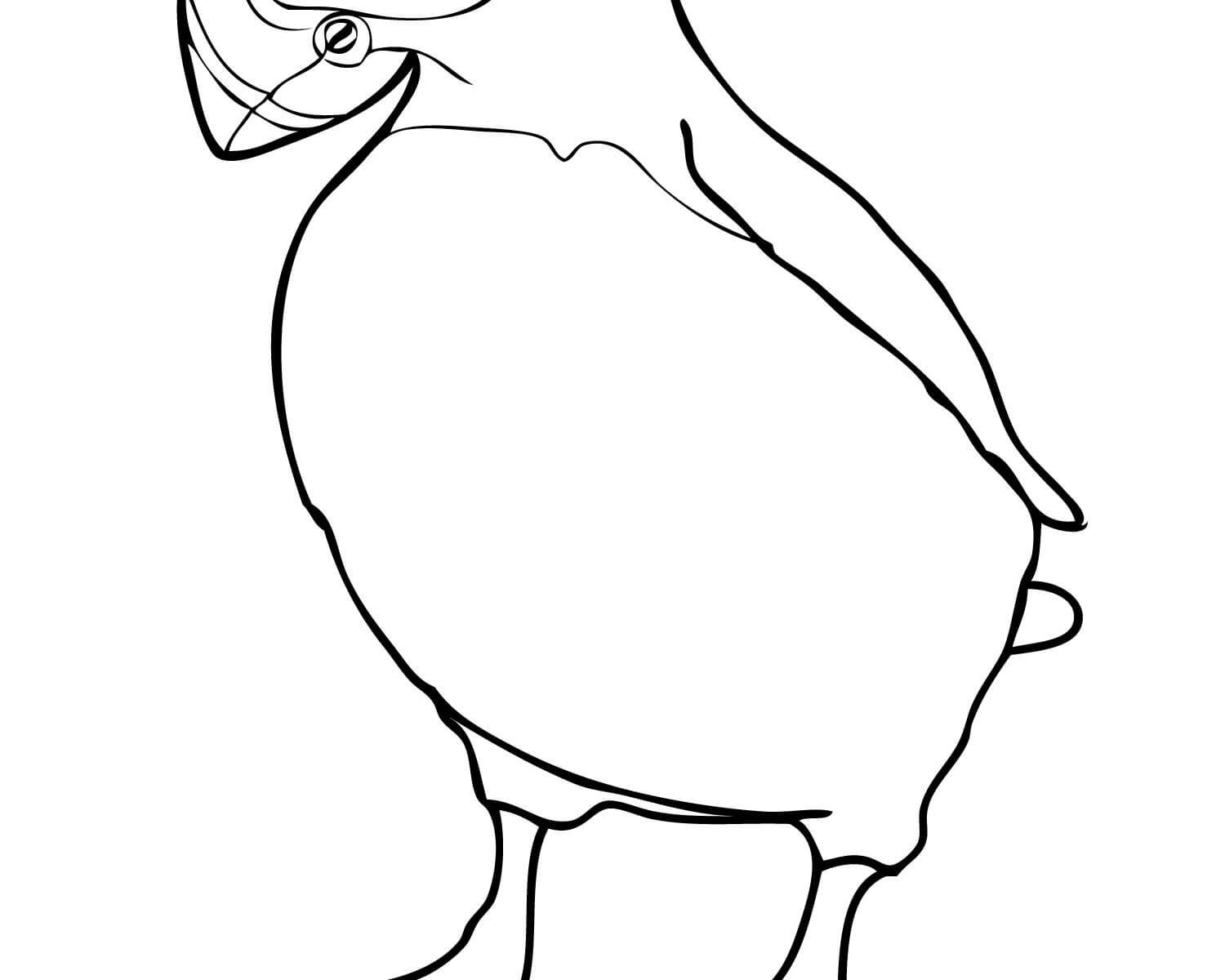 1500x1200 Impressive Puffin Coloring Page Cool Ideas