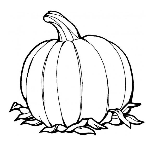 666x605 Pumpkin Coloring Page Pumpkin Coloring Pages Coloring Kids Free