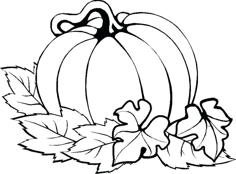 800x592 Thanksgiving Coloring Pages Kindergarten Pumpkin Easy Thanksgiving