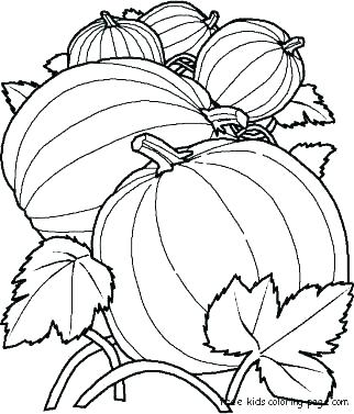 322x377 Pumpkin Patch Coloring Page Or Pumpkin Patch Coloring Page Pumpkin