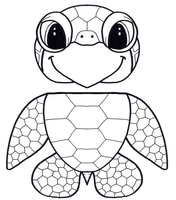 600x680 Printable Turtle Coloring Pages Printable Turtle Coloring Pages