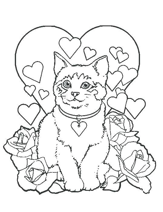 539x701 Kitten Puppy Coloring Pages Coloring Pages Kittens Coloring Pages