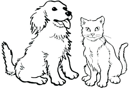 500x344 Kittens Coloring Pages Puppies And Puppy Kitten Christmas