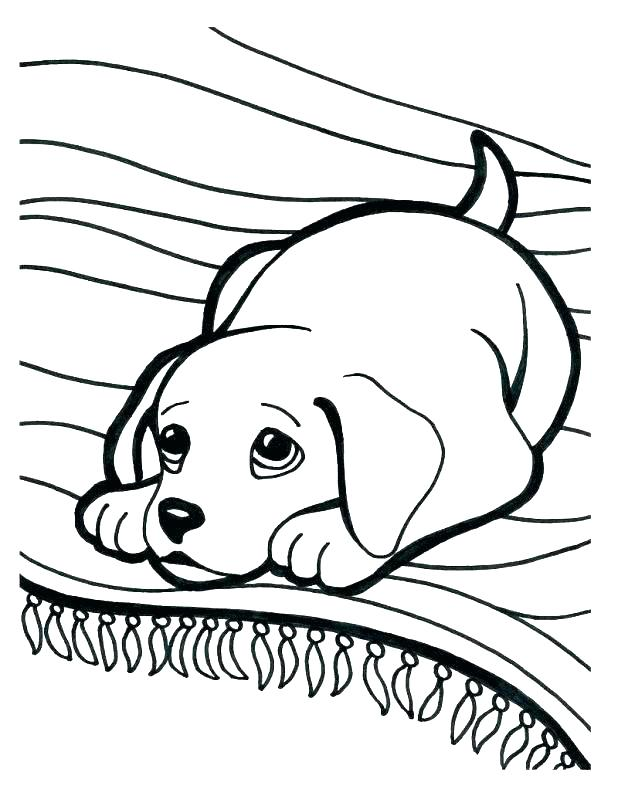 618x806 Puppy And Kitten Coloring Pages Kittens And Puppies Coloring Pages