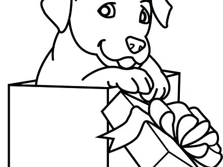 440x330 Puppy And Kitten Coloring Pages New Puppy And Kitten Coloring