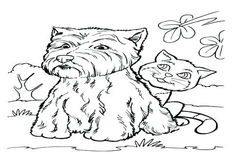 476x333 Puppy And Kitten Coloring Pages Very Cute Puppies And Kittens