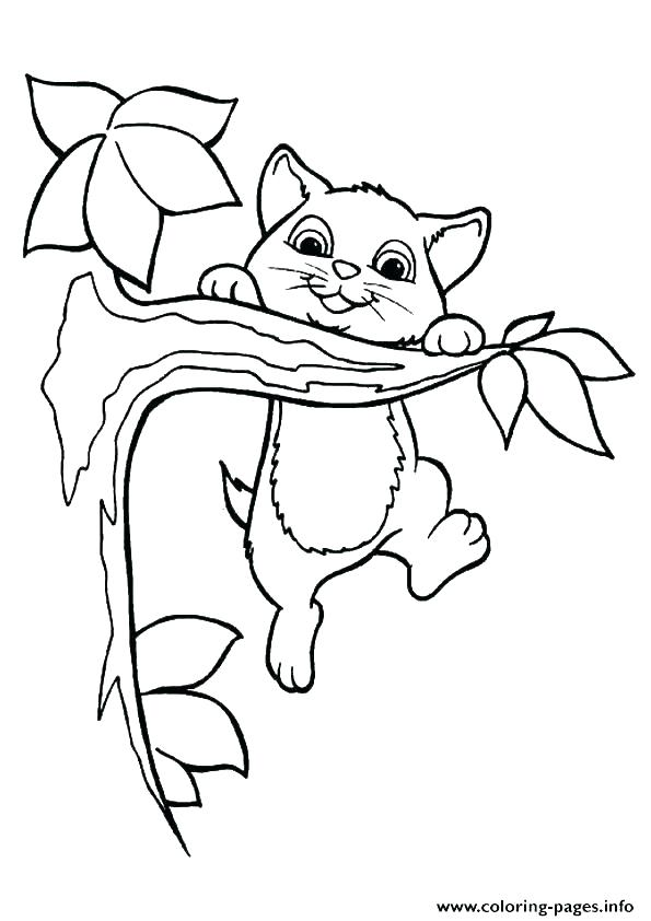 595x842 Puppy And Kitty Coloring Pages Puppy And Kitten Coloring Pages