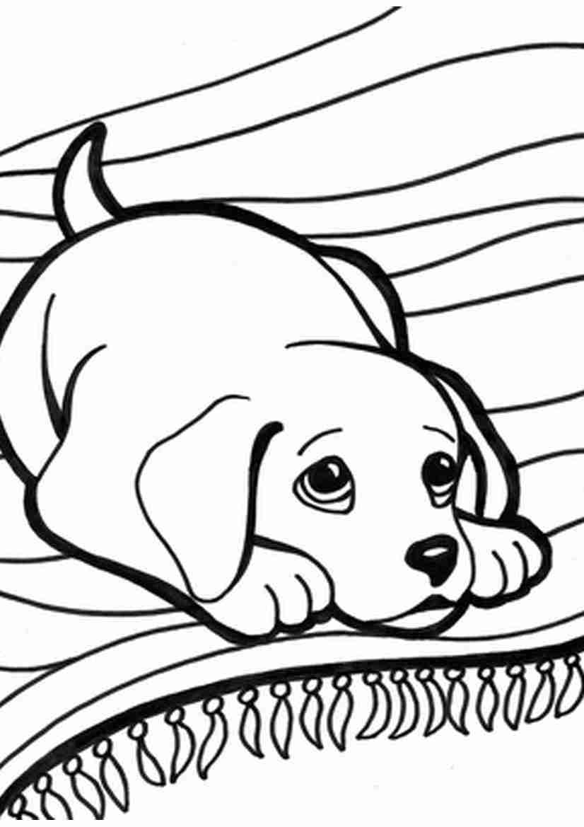 826x1169 Puppy Kitten Coloring Page Free Download Amazing And Pages Olegratiy