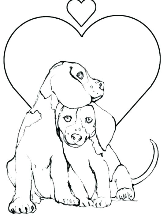 546x712 Coloring Pages Of Cute Puppies And Kittens Coloring Pages Of Cute