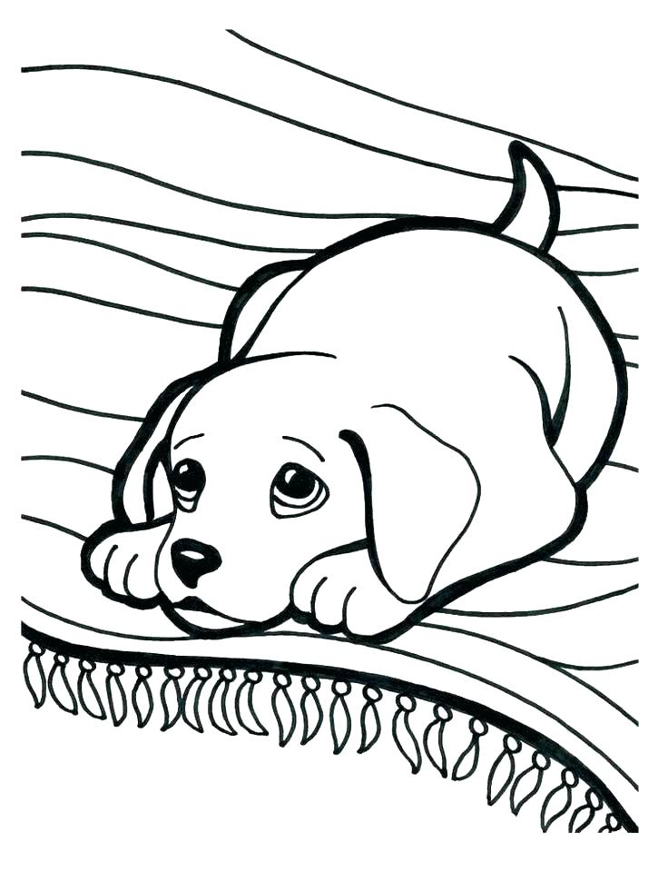 736x960 Cartoon Puppy Coloring Pages Puppies Coloring Page Puppy Dog