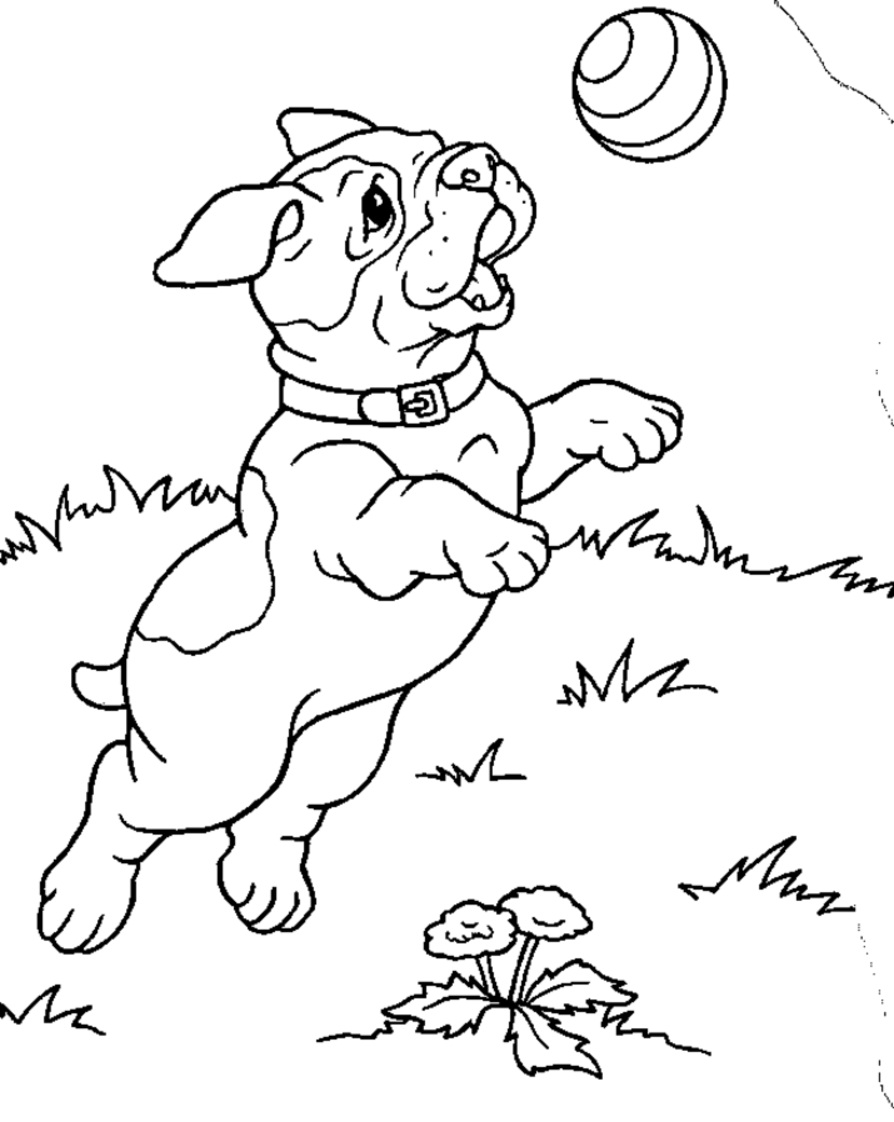 894x1122 Free Printable Puppies Coloring Pages For Kids