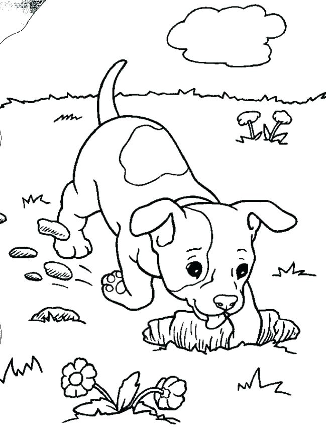 649x854 Badger Coloring Pages Free Coloring Pages Puppies Coloring Pages