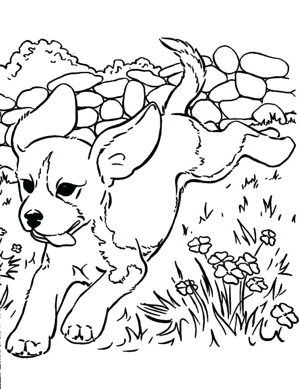 600x780 Puppy Pictures To Color And Print Cute Puppy Coloring Pages