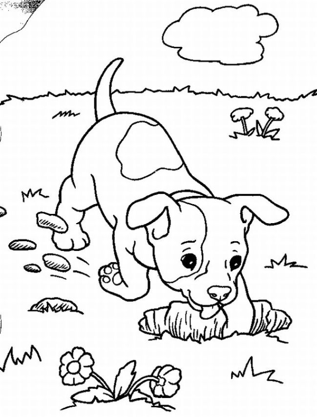649x854 Puppy Coloring Sheet Puppy Love Coloring Pages Displayed A Sense