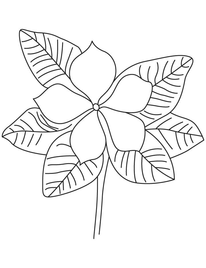 720x936 Purple Periwinkle Coloring Page Vocales Activities