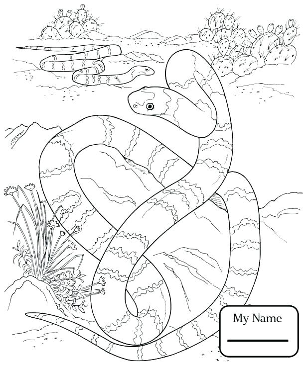 614x734 Coloring Pages Christmas Tree Reptiles Download Snake For Kids