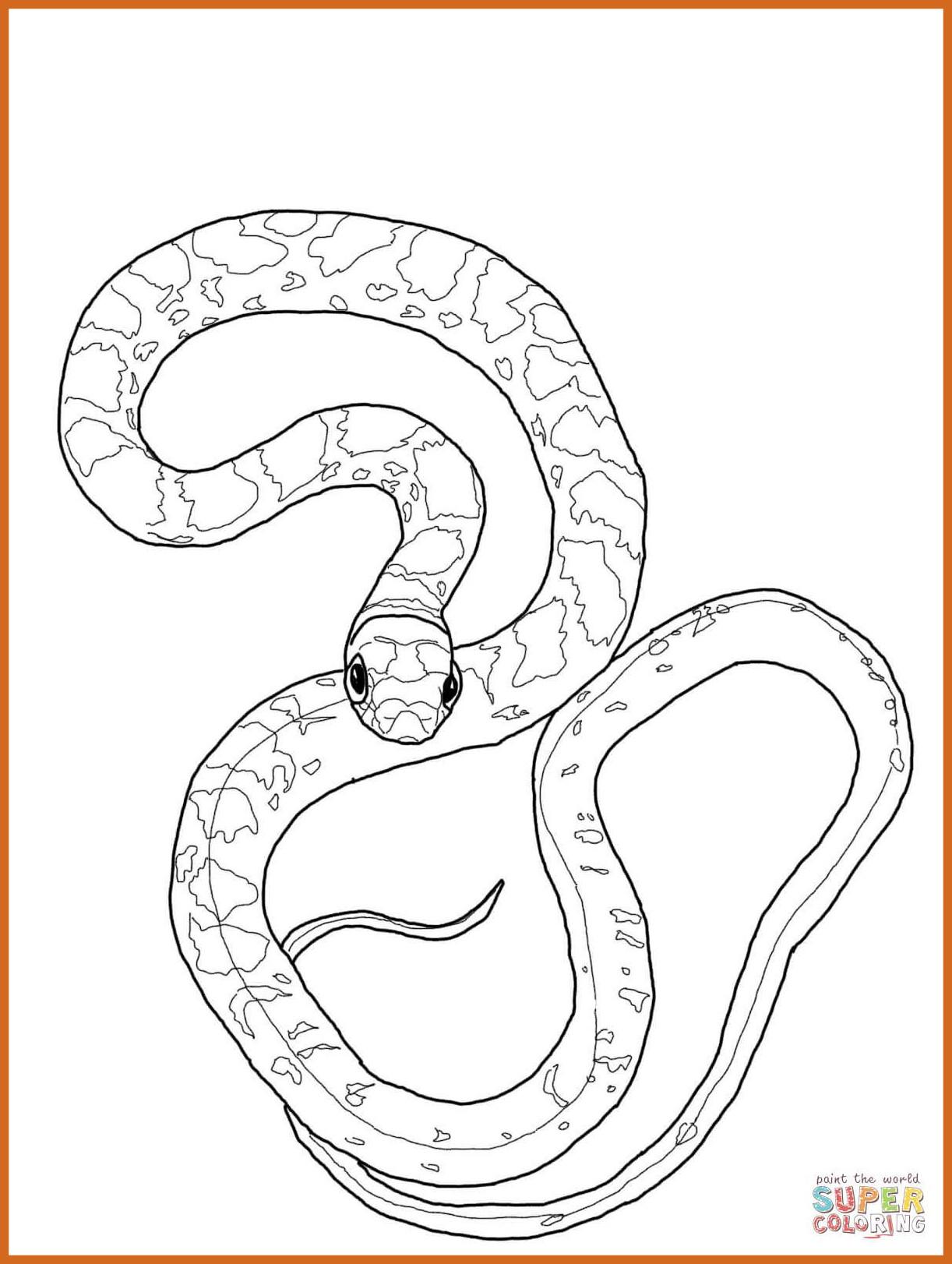 1222x1622 Incredible Ball Python Coloring Page Printable For Snake Trend